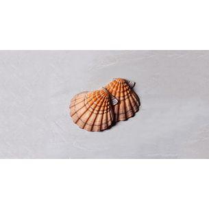 010106044_009_1-CONCHA-NIKKI-BEACH