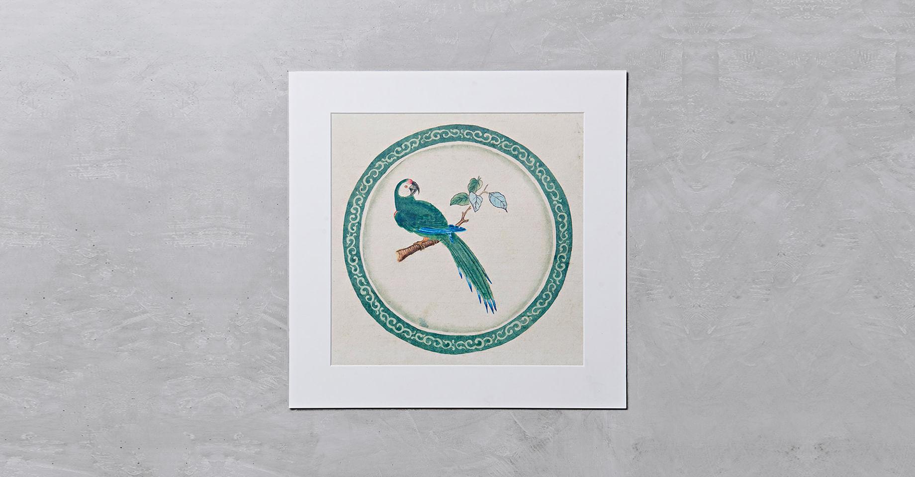 010106053_020_1-GRAVURA-BIRD-1