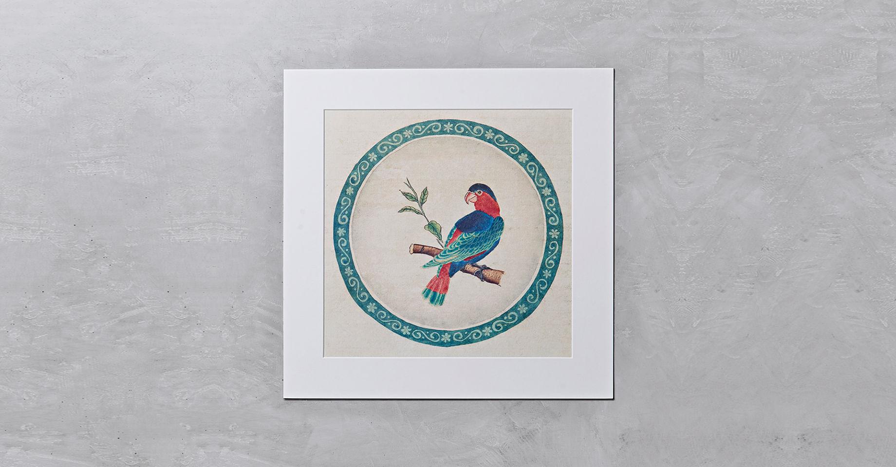 010106056_020_1-GRAVURA-BIRD-4