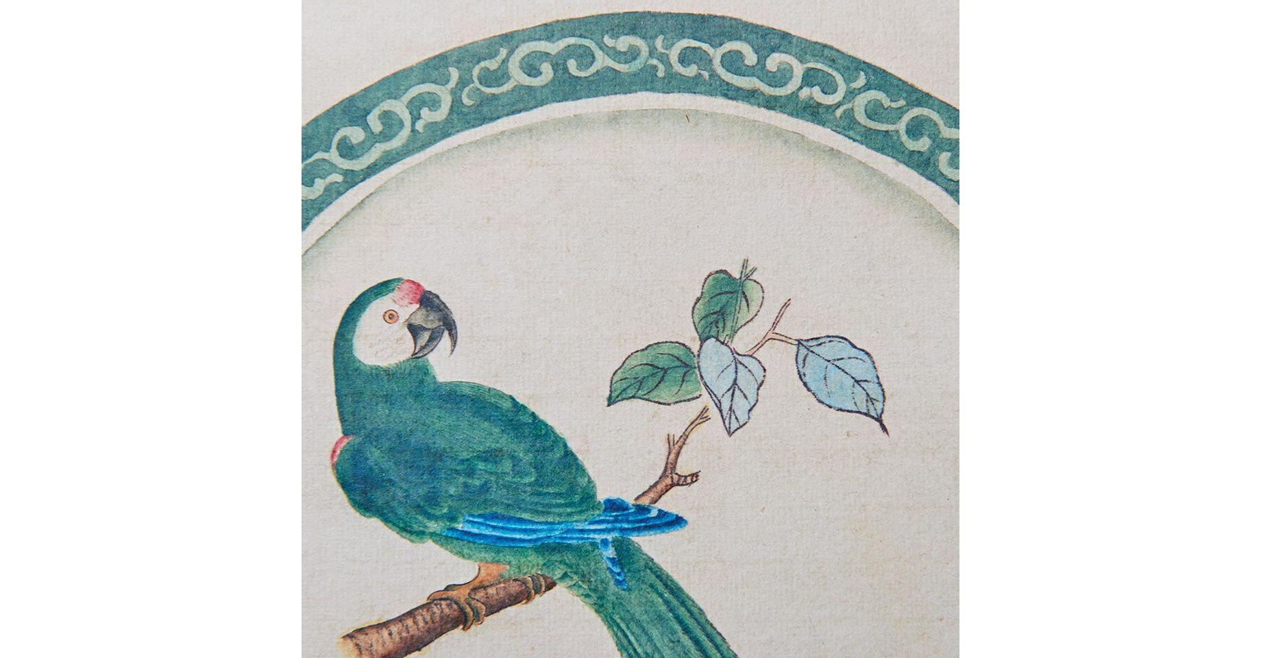 010106053_020_2-GRAVURA-BIRD-1