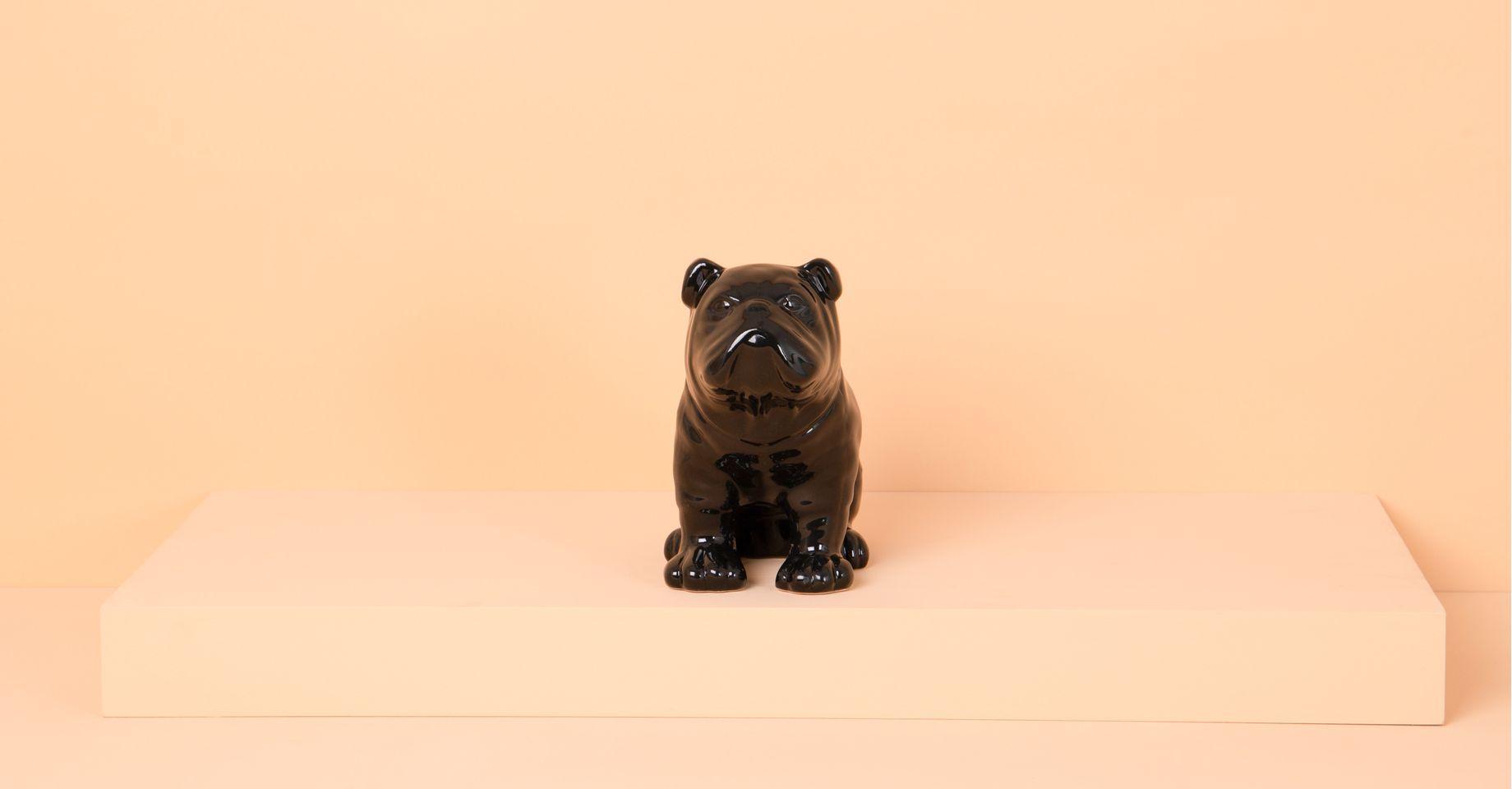 010129005_204_1-COFRE-DOG