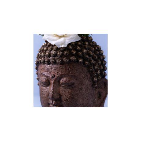 010119126_019_3-VASO-BUDDHA-DAI